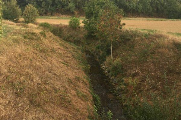 Nach der Eberstädter Kläranlage zweigt der Sandbach ab, der im 15. Jahrhundert gegraben wurde, um Modau-Hochwasser in den Rhein zu leiten.