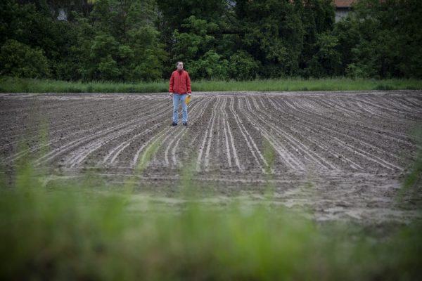 In vertikal gepflügten Felder wie diesem hier fließt Schlamm nach Regen leicht in den Fluss. Daher sollten Bauern quer pflügen.