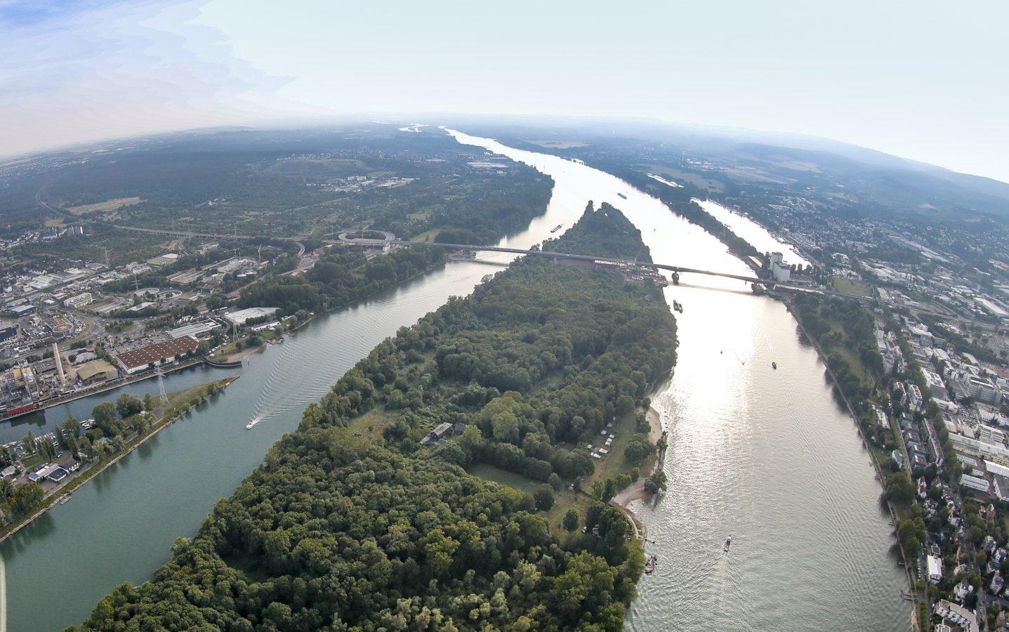 Von der Quelle bis zur Mündung: Tausende sammeln Müll am Rhein