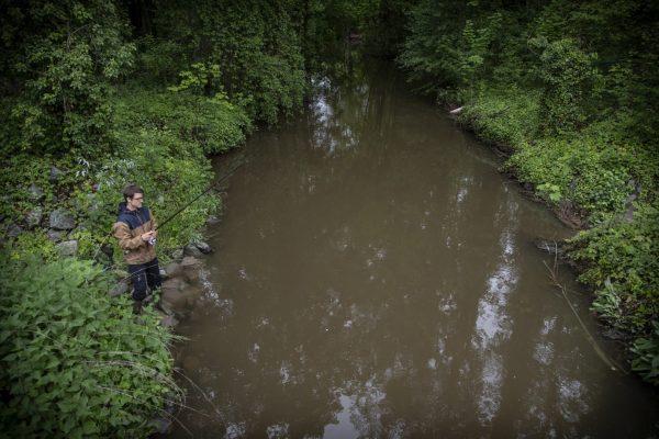 An der Modau angeln nur wenige, auch wenn Angelvereine in Ober-Ramstadt, Nieder-Ramstadt und Pfungstadt die Pacht haben.