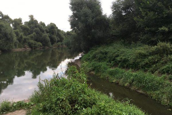 Am Ende mündet die Modau recht schmal und unauffällig bei Stockstadt in den Erfelder Althrein.
