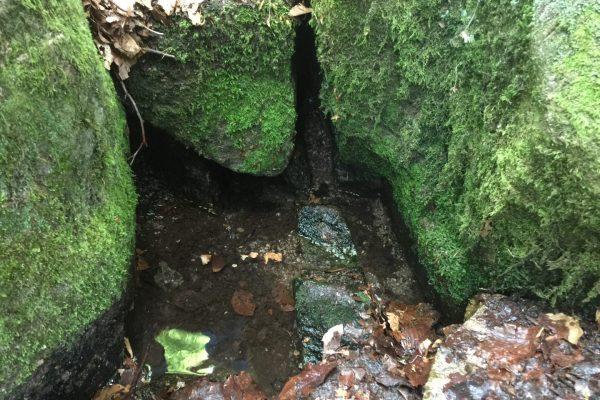 Tief bücken muss man sich, um die ersten Tropfen Modauwasser zu berühren. Denn die Quelle ist unscheinbar.