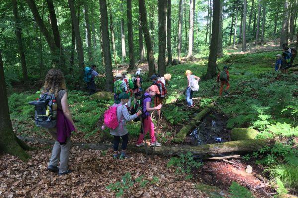 Die Klasse folgt der Modau bis Ernsthofen, wo sie im Schullandheim des Kreises übernachten.