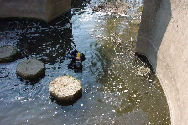 Die Bilder stammen von 2003. Der Taucher stieg in die Modau nach dem Wehr, an dem der Sandbach abzweigt.