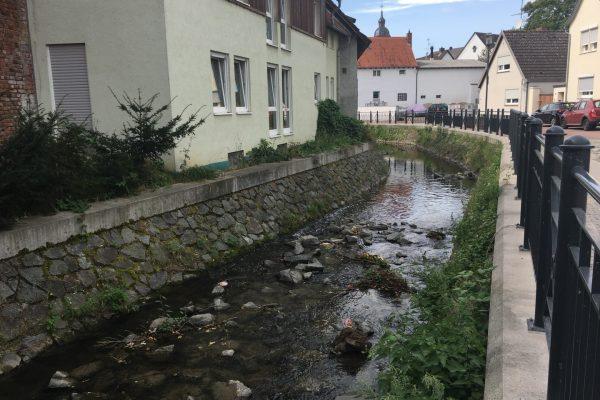 Die Modau fließt mitten durch Pfungstadt. Auch hier ist der Fluss meist in Stein und Mauern gefasst.
