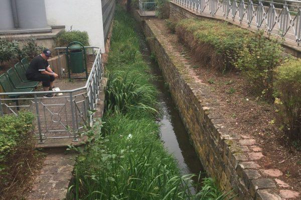 """Ein Kanal zweigt ab, um das Modauwasser zum Restaurant """"Hammermühle"""" zu leiten."""