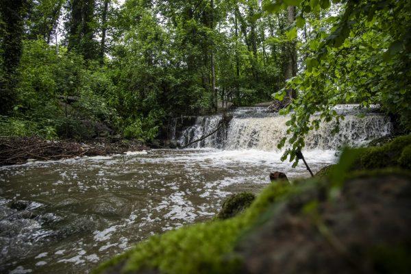 Dieser Wasserfall zählt zu den schönsten Orten an der Modau; gleichzeitig ist er ein Wehr, das ein Wanderhindernis für Fische ist.