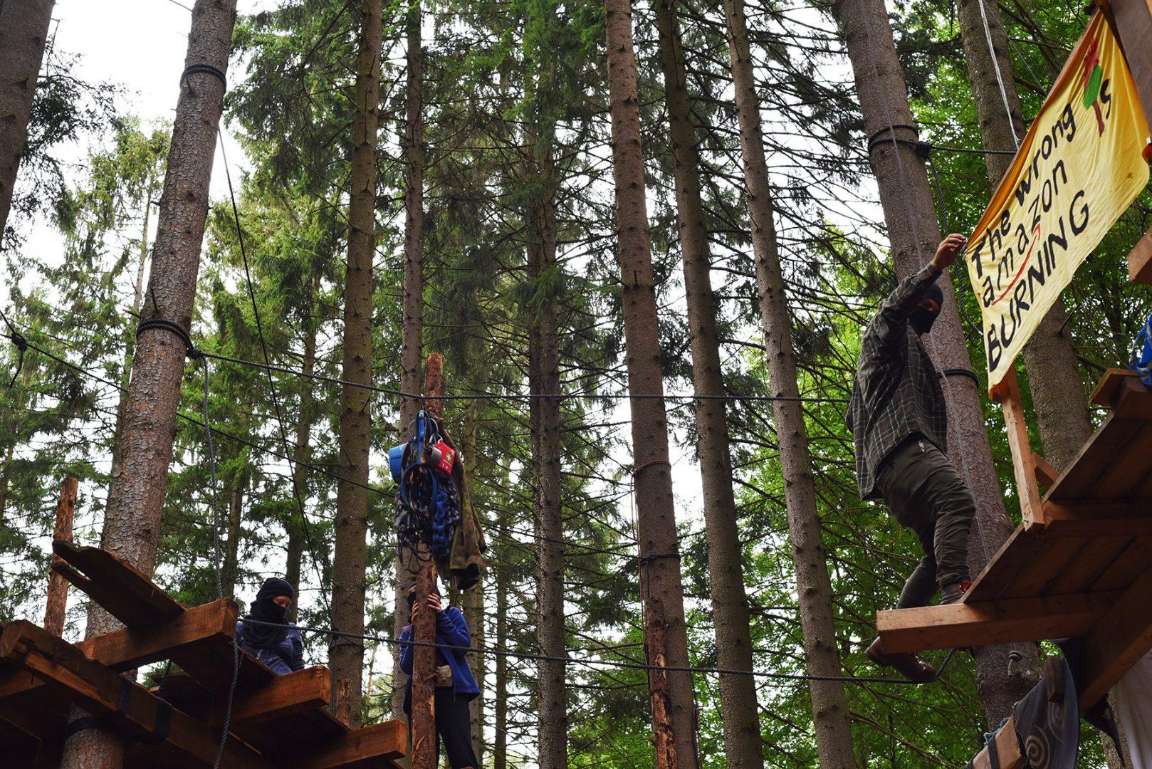 Waldbesetzung: Kampf um die Bäume
