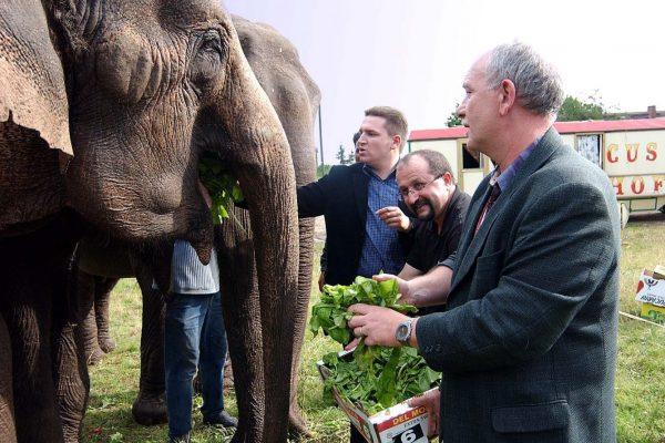 Als junger Bürgermeister rettet Held im Jahr 2004 auch mal Elefanten (Foto: hbz/Schäfer)